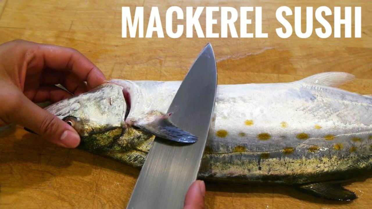 Mackerel Sushi 2pcs – JT Sushi Japanese Restaurant  Japanese Mackerel Sushi